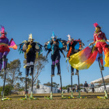 Spaghetti Circus brought colour to the fields with their incredible birds on stilts